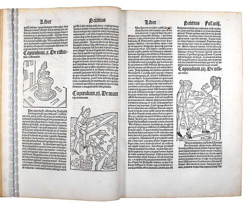 Woodcut illustrations in Crescentiis, Petrus de; Ruralia commoda