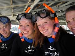 IMG_4812 (dolphingirl0609) Tags: world sea camp san texas dolphin lion seal killer whale orca beluga antonio advanced career