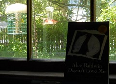 The view from my front window - plus book