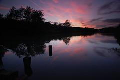 The sun sets over the lake (blinkingidiot) Tags: nottingham sunset lake mill reflections lakes nottinghamshire bestwood thegalaxy bulwell milllakes mygearandme mygearandmepremium mygearandmebronze mygearandmesilver blinkagain galleryoffantasticshots flickrstruereflection1 flickrstruereflection2 flickrstruereflection3 flickrstruereflection4 flickrstruereflection5 flickrstruereflection6 flickrstruereflection7 eltringexcellence flickrstruereflectionexcellence flickrsfinestimages1 flickrsfinestimages2 flickrsfinestimages3 me2yoyphotographylevel1 vigilantphotographersunite vpu2