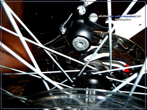 Bicicletas listas para hacer el Camino 5990214145_4725699fc4