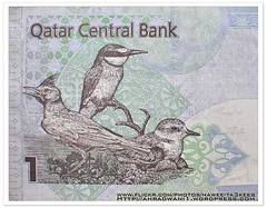 Money Art 1QR ({ahradwani.com} Hawee Ta3kees- ) Tags: stilllife money green bird 35mm close ali hassan doha qatar banknotes d90 nikon35mm  moneyart nikond90 nikond90club hawee nikon35mmf18  haweeta3kees  ta3kees ahradwanicom ahradwani nikond90sampleimages