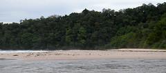 St Pauls National park, Palawan (Bram Demeulemeester - Birdguiding Philippines) Tags: nationalpark philippines stpauls palawan undergroundriver sabangbeach lowlandforest subterraneanriver bramdemeulemeester birdguidingphilippines birdingtoursphilippines