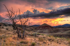 Sunset at Painted Hills in Central Oregon - HDR (David Gn Photography) Tags: sunset sky tree colors clouds oregon centraloregon river landscape ancient raw view scenic dramatic soil layers paintedhills hdr unit petrified shale laterite floodplain johndayfossilbedsnationalmonument 3xp siltstone mudstone wheelercounty canoneos7d sigma2470mmf28ifexdghsm mygearandme sigma50th