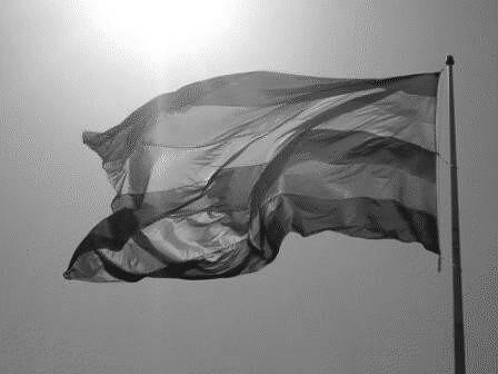 Bandeira do Orgulho Hétero