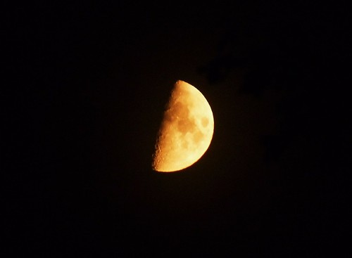 Golden Half Moon - 6 August 2011