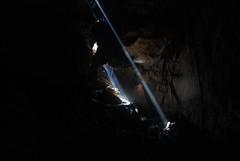 Lasers (taijibasset) Tags: cave chuathay