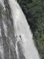 IMG_0180 (Nelson Luiz Wendel) Tags: brazil brasil mar waterfall rainforest do wasserfall air maji talon tropical slap serra foss juga cascade floresta cachoeira ya terjun ecoturismo   cascada joinville  cascata vesiputous eas waterval  rhaeadr fervenza vattenfall vodopd elale wodospad  urjauzia vandfald itapocu   vodopad nc vzess thc ecossistema krioklys maporomoko mata atlntica denskritums lal   ujvar    regenvaldt regenwaldt    catarracta  kaskad