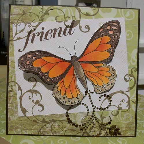 td butterfly