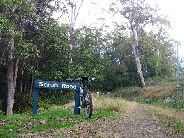 Scrub Road