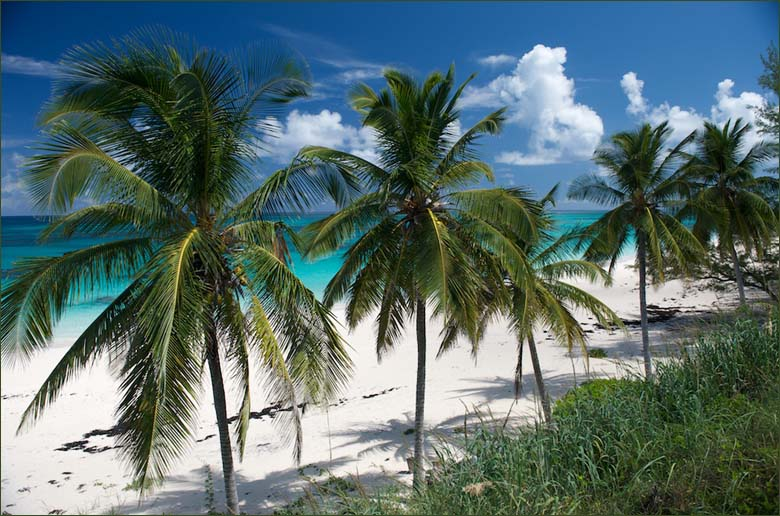 Bahama-Islands_C6AKX