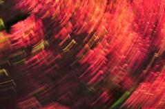 Red Swirl (lclower19) Tags: camera red tower gardens botanical movement nikon massachusetts hill swirl icm boylston intentional d90 intentionalcameramovement