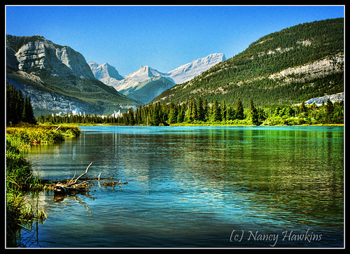 Mountain River by Nancy Hawkins