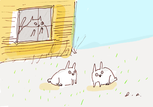 Bunny meadow