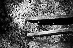 Rozendaal-11 (Lord Battenborough of Snodsbury) Tags: camera trees summer holland nature bomen country nederland thenetherlands zomer allrightsreserved wandeling gelderland plaatsen provincie canoneos1dsmarkii evenementen rozendaal officieel canonef35f14lusm marcocbatenburg denbaatnl