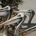 E mais pelicanos metidos!