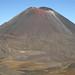 O Vulcao conico Ngauruhoe