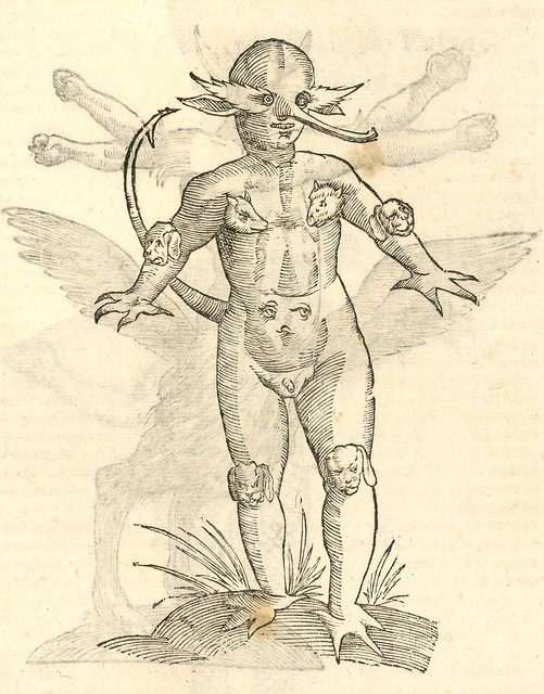 16th century woodcut of seamonster by Aldronvandi