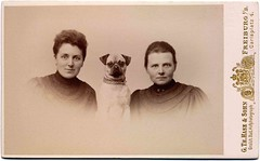 A portrait of three people (Libby Hall Dog Photo) Tags: chien dogs cane pug hond perro gifts hund dogphotography vintagephotographs kennelclub vintagedogs printsforsale antiquephotographs dogbooks libbyhall thelittledoglaughed buyprints picturelibrary doggifts antiquedogphotographs antiquedogs libbyhallcollection thesewereourdogs dogsinvintagephotographs dogsinantiquephotographs kennelclubpicturelibrary libbyhalldogphotographs princeandotherdogsprinceandotherdogsii postcarddogs