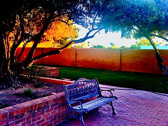 Benching In The Golden Hour Glow (Chic Bee) Tags: from sunset word for golden is heart you meals courtyard actually surgery thank hour latin after hebrew comes whose congregation meaning prayers goldenhour literal chofetz yiddish hashem benediction benching wellsaid chayim wellspoken myfirsttrip scenicsnotjustlandscapes chofetzchayim