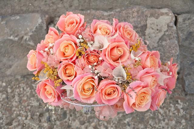 roses - trandafiri