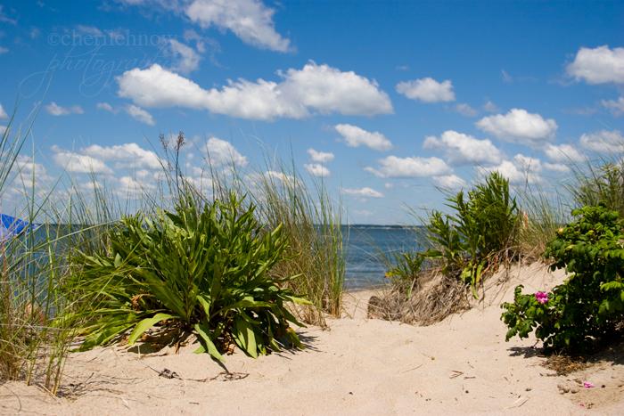IMG_8462_beach.jpg