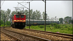 12919 Malwa Express (Ankit Bharaj) Tags: india green field station electric train canon is dc crossing indian engine level locomotive motor 100 express indore curve railways ldh jammu ankit tawi sx ludhiana haryana superfast railfanning cantt malwa mohri ambala irfca clw bharaj wap4