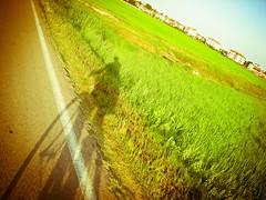 18/365 (Diario de Roville) Tags: portrait selfportrait bike myself autoretrato bicicleta bici autoritratto bicicletta selfie navigliogrande