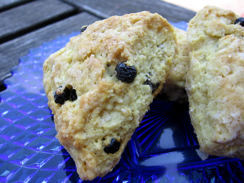blueberry coconut scones