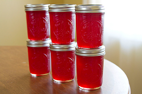 Red Currant Jelly - 3