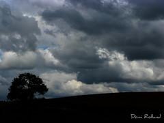 Colère (Domi Rolland ) Tags: france nature canon ciel juillet arbre aveyron 2011 g9 top20cloud top2020 lévézou bouloc