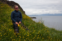 Irene takes a break in a field of buttercups, Island of Canna