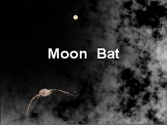 "moon  bat • <a style=""font-size:0.8em;"" href=""http://www.flickr.com/photos/63845265@N04/5971344354/"" target=""_blank"">View on Flickr</a>"