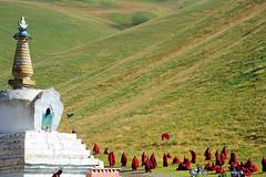Sershul Tekchen Dargyeling monastery. Tibet (reurinkjan) Tags: miphamrinpoche བོད་ལྗོངས། ©janreurink tibetanplateauབོད་མཐོ་སྒང་bötogang khamཁམས། tibetanethnicityབོད་རིགས། buddhismསངས་རྒྱས་ཆོས་ལུགས། tibetབོད tibetanབོད་པ stupaམཆོད་རྟེན། sershulསེར་ཤུལ།county drukparinpoche chortenམཆོད་རྟེན༏mchodrten monasteryདགོན་པ།གླིང་།dgonpagling monkགྲྭ་བ།grwaba 2010༢༠༡༠ sershultekchendargyelingསེར་ཤུལ་སྟེག་ཆེན་དར་གྱེ་གླིང་ gelukpayellowhatsectདགེ་ལུགས་པdgelugspa conchshellhorninstrumentདུངdung gelugpaschoolརི་བོ་དགའ་ལྡན་ribodgaldanriwoganden avalokiteshvarakharsapaniཁར་ས་པ་ནི་kharsapani sershülgön tsongkhapalhakhang