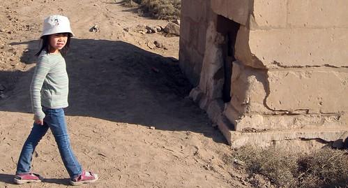 Cat at Karnak
