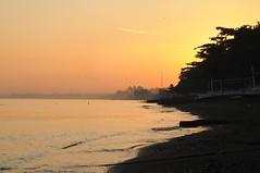 Bali, Lovina Beach - morgens am Strand, Schwalben bei Sonnenaufgang (21) (Chironius) Tags: morning bali sunrise indonesia dawn alba indianocean amanecer dmmerung sonnenaufgang morgen indonesien ochtend matin gegenlicht  morgens zonsopgang mattina aube morgendmmerung morgengrauen indischerozean indik dageraad