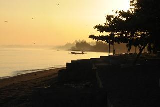 Bali, Lovina Beach - morgens unter Schwalben am Strand (28)