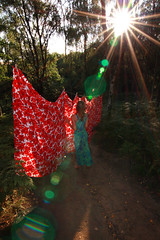 I will sew again :) (Eliza Frydrych) Tags: wood las trees red sun girl fabric flare material ferns sunflare czerwony drzewa redfabric canoneos450d tokina1116