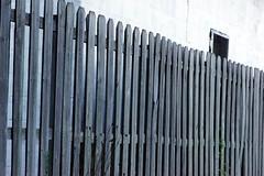 135:365 (Andrewski Papalooski) Tags: window fence sony gimp 85mm chillin 365 135 70200mm soop f32 cosmicar nex5 paniwozik straightoutofprocessing