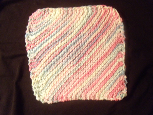 Dishcloth (31/365)