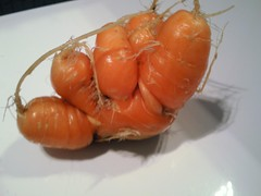 Silliest carrot so far