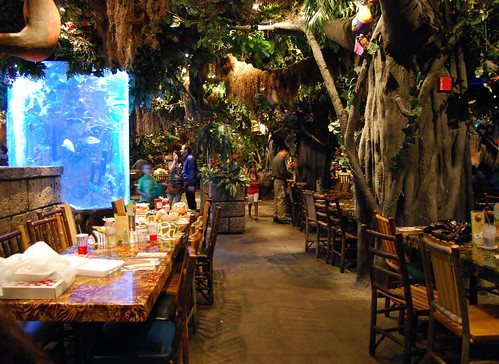 Second Shot of Rainforest Cafe Interior