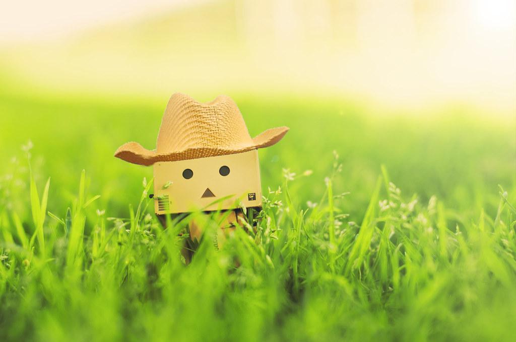 Farmer Danbo <3