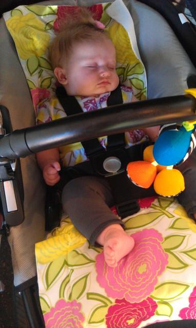 perinka stroller liner and sleepy baby.