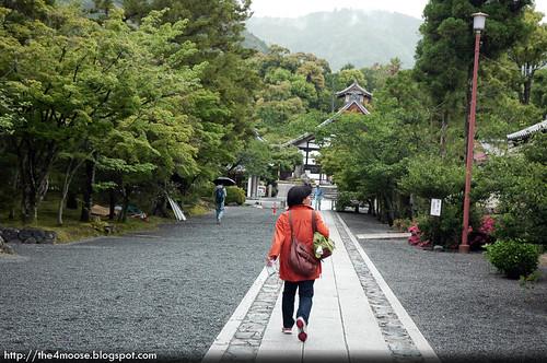 Tenryuji 天龍寺 - Pathway to Temple