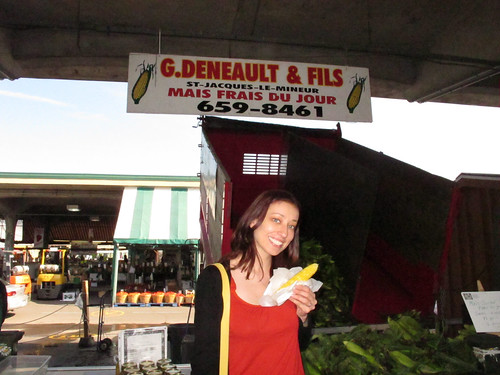 Sweet corn at Jean Talon market in Montreal