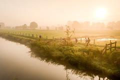 Misty river, Kromme Rijn, 2011