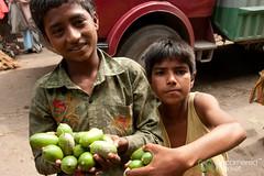 Boys Selling Limes - Srimongal, Bangladesh (uncorneredmarket) Tags: boys fruit kids children market citrus bangladesh limes freshmarket foodmarket srimongal sylhetdivision sreemangal