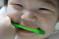 歯ブラシをかじる