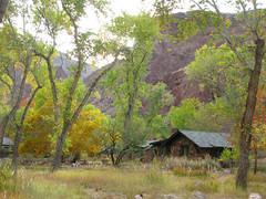 desert grandcanyon destination riparian phantomranch